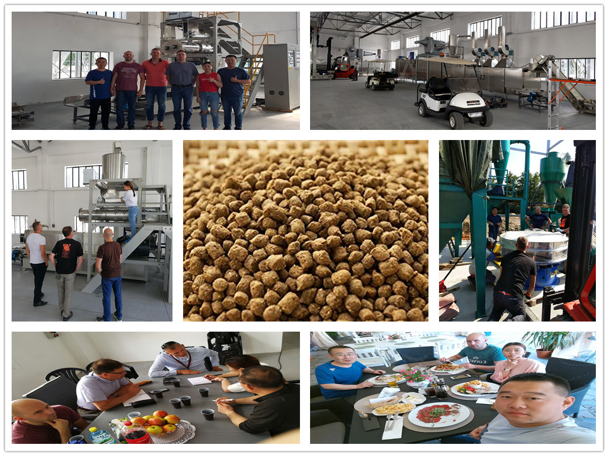 Our 1t/h fish feed production line in Poland